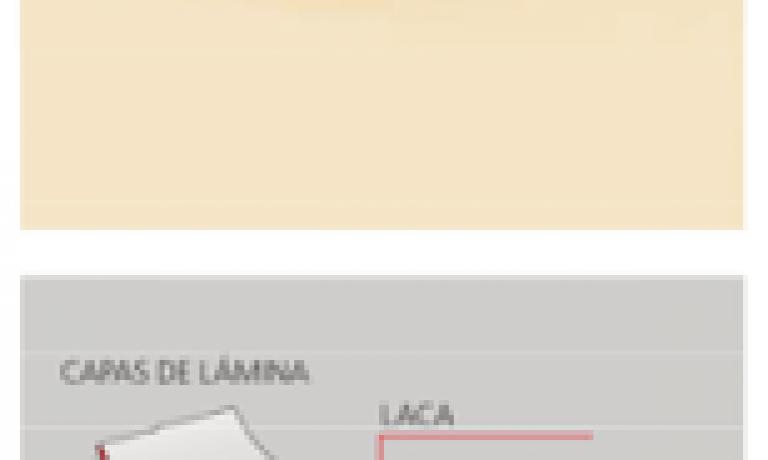 FRENTE DE LÁMINAS